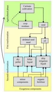 flowchart_bioraffineria_VALSO